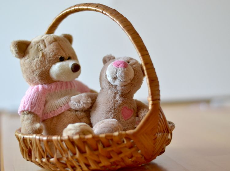 25. maj: mednarodni dan, ki še posebej opozarja na pogrešane otroke