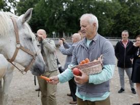Billu Murrayju v lipiški kobilarni priredili adrenalinski dan in poskrbeli za lepo predstavitev Lipice